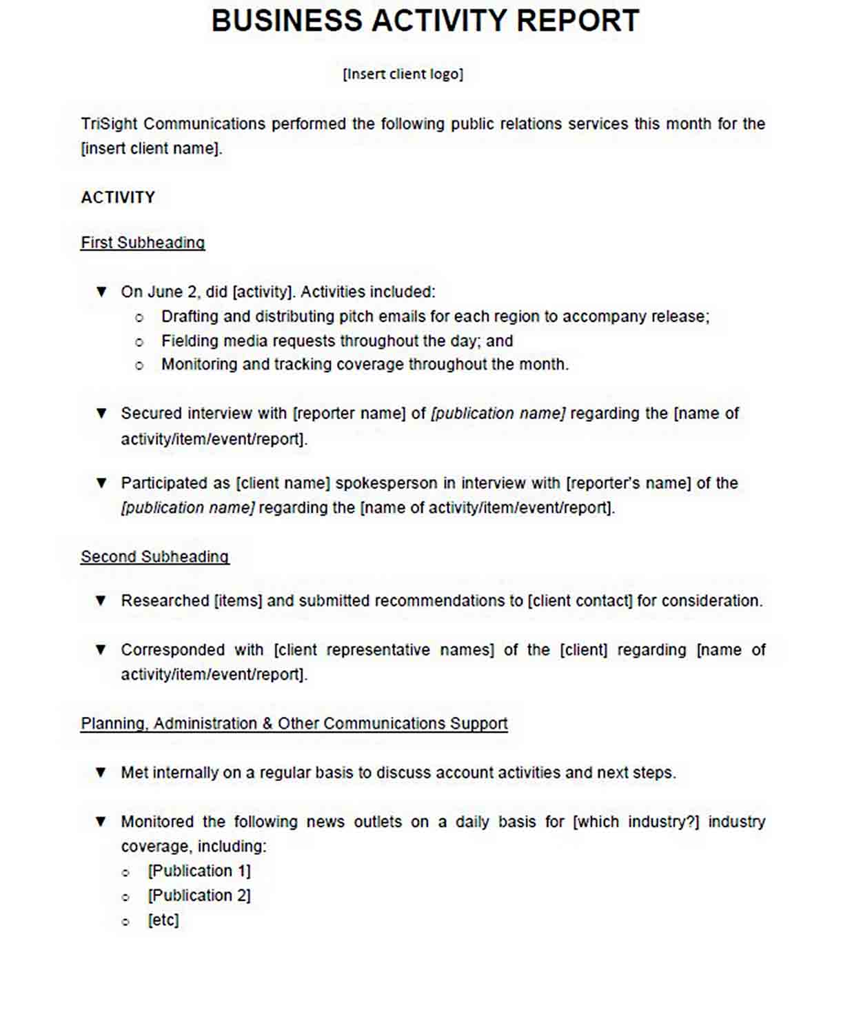 Business Activity Report Format sample