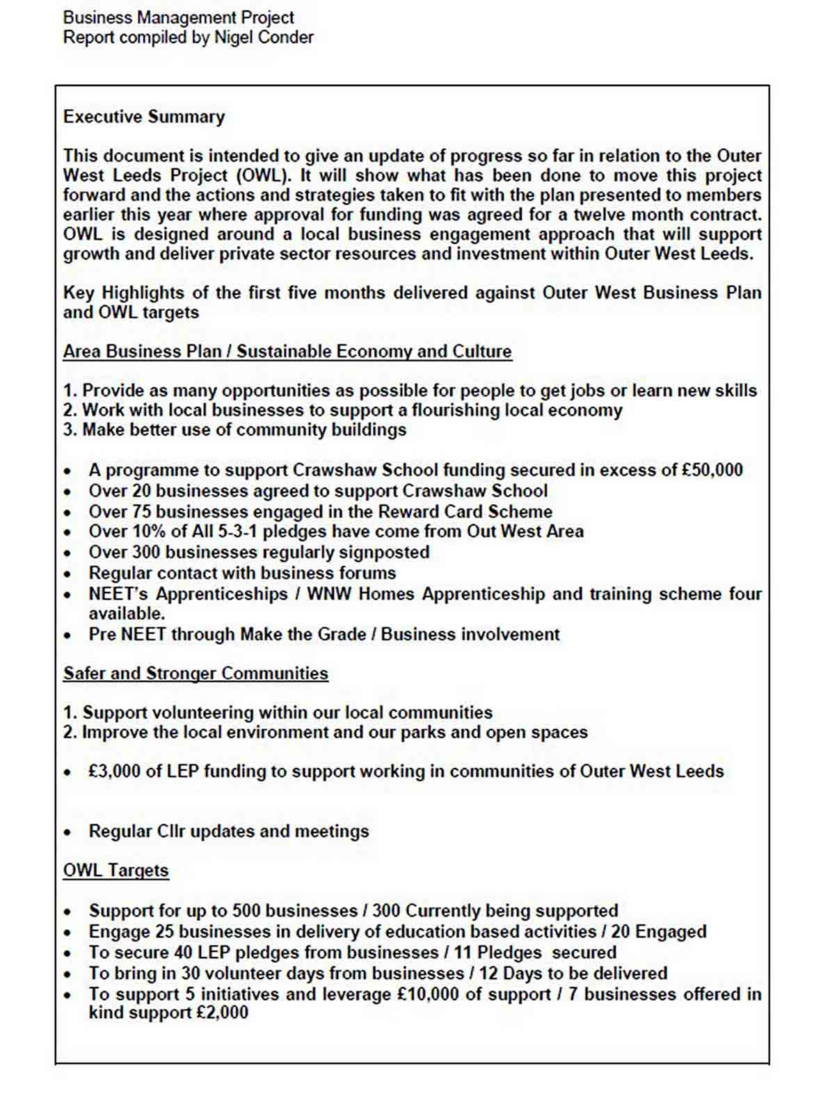 Business Management Project Report Template sample