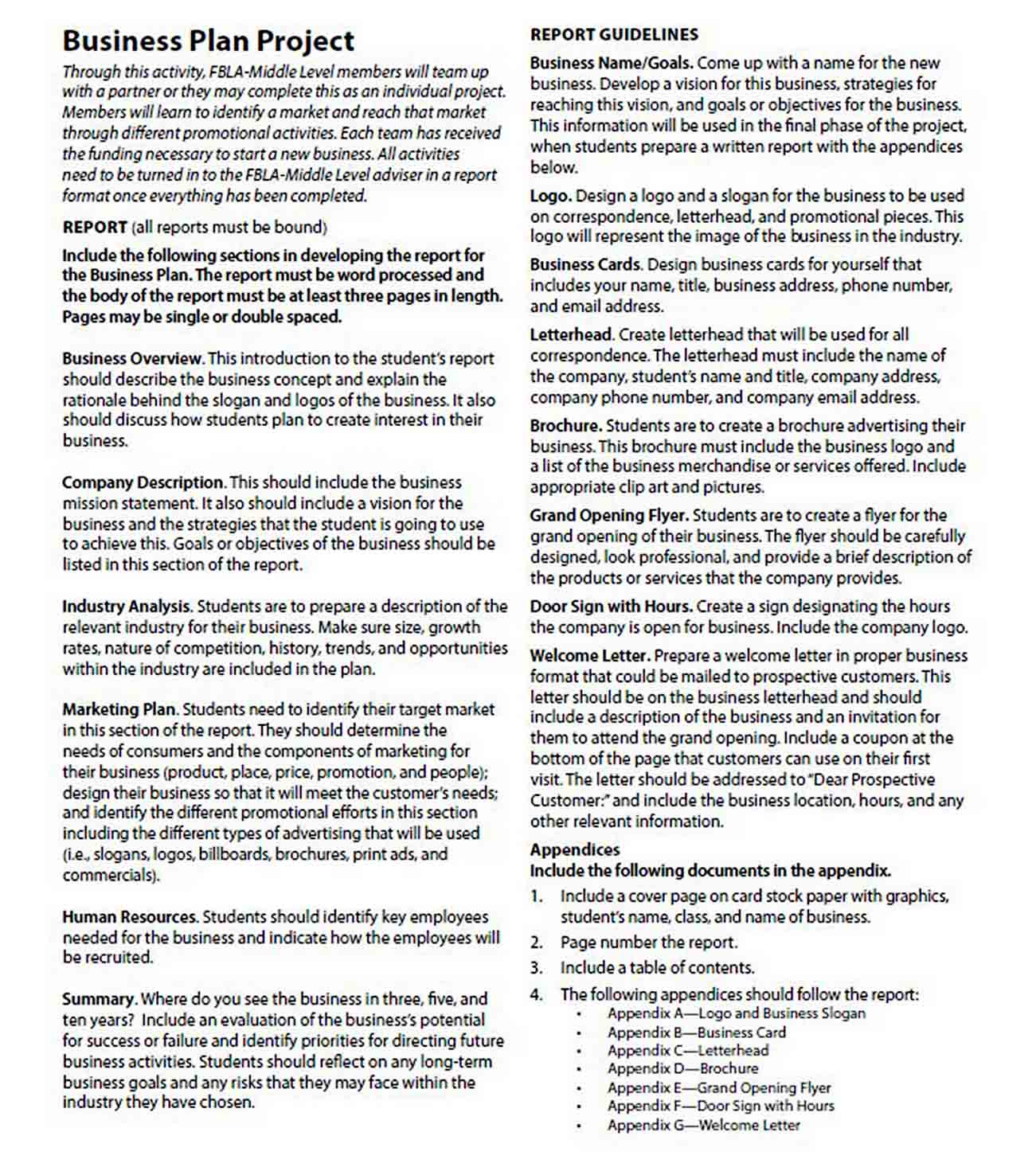 Business Plan Project Report Template sample