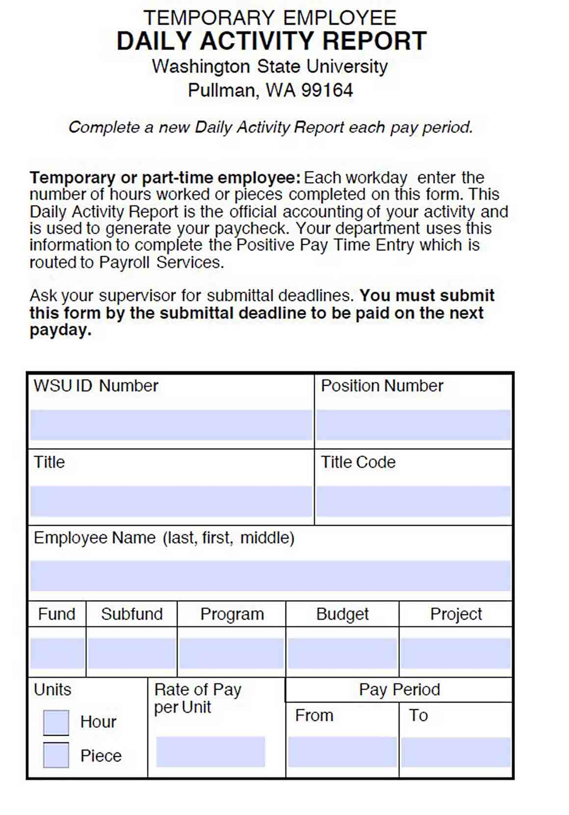 Daily Activity Report for Temporary Employee Template sample