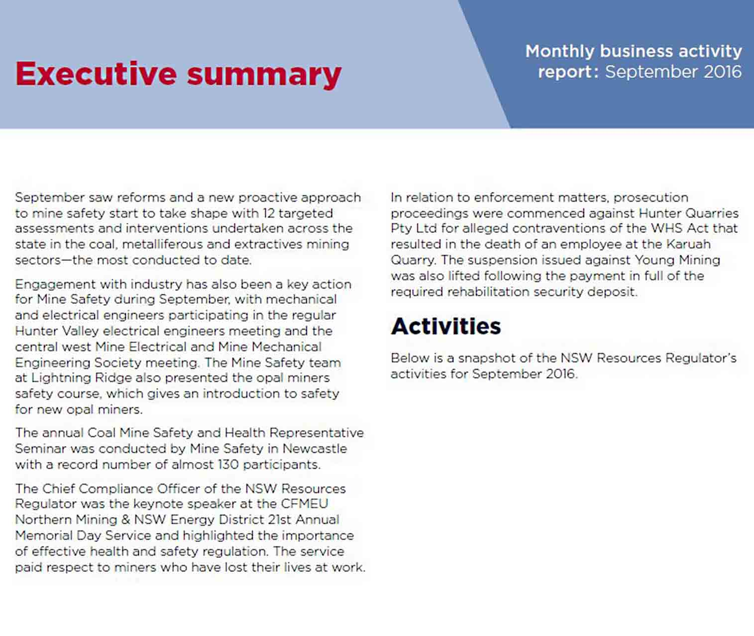 Monthly Business Activity Report Template sample