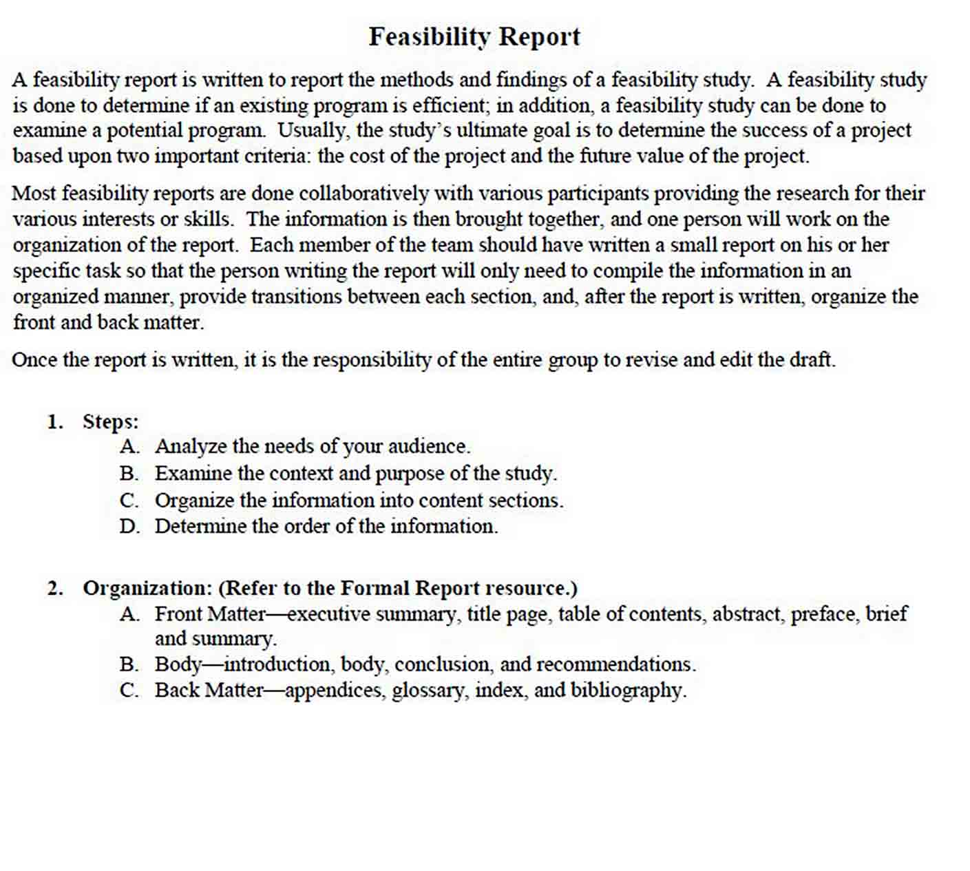 Feasibility Report Template sample